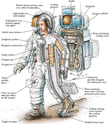 moon landing modules cutaway - photo #30